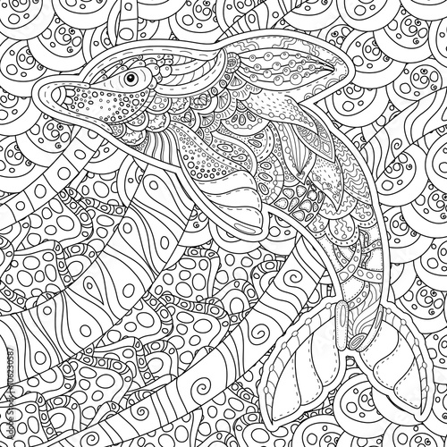 Kleurplaten Dieren Dolfijnen Quot Zentangle Stylized Dolphin Adult Anti Stress Coloring