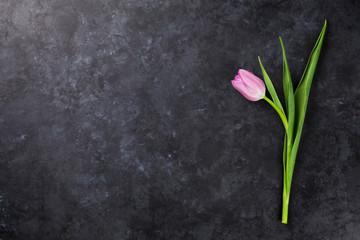 Fresh purple tulip flower