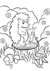 Little cute hedgehog sits on the stump