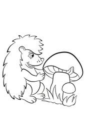 Little cute hedgehog sees the big mushroom.