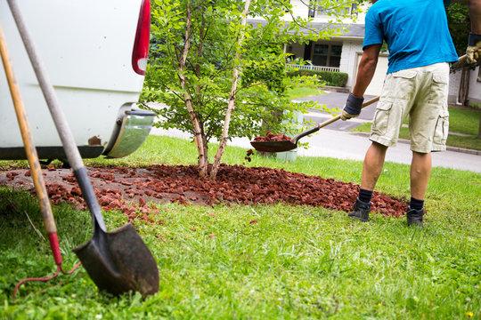 weekend yard work