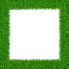 Green grass frame with copy-space. Square border template isolated on white background. Abstract plant texture. Symbol of environment, nature, eco and fresh, ecology Organic design Vector Illustration
