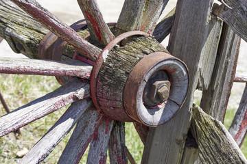conestoga wagon wheel