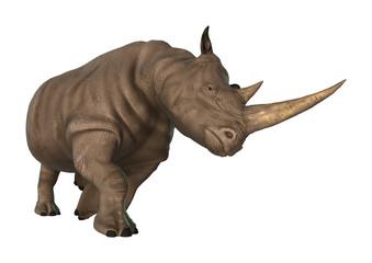 3D Illustration Rhinoceros on White
