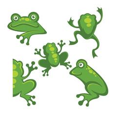 Cute green tree frog cartoon character Icons, symbols and emblem