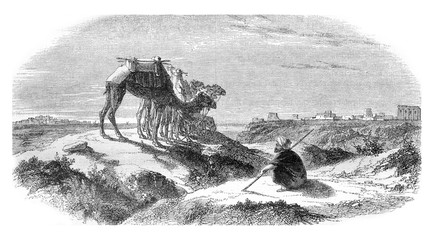 View from the side of Syria, vintage engraving.