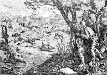 Hunting cranes, after Jean Stradan, vintage engraving.