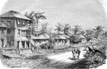 A Village in the tropics, vintage engraving.