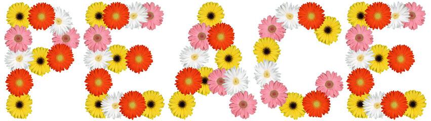 Peace Friede Frieden aus Blumen Blume Natur Freisteller auf weis