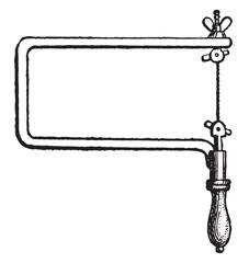 Bocfil, vintage engraving.