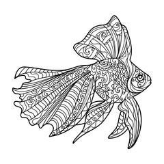 Gold fish coloring book for adults vector