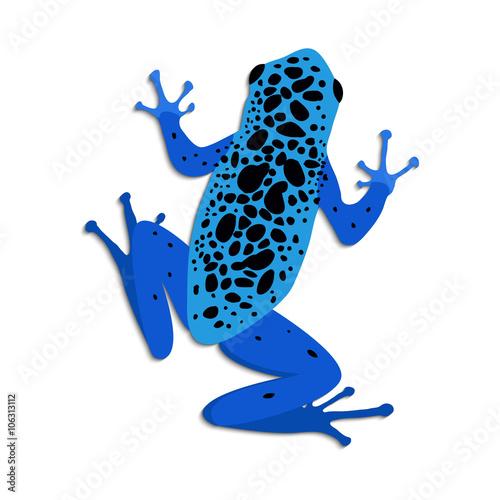 blue poison dart frog flat design vector illustration of blue frog rh fotolia com Red-Eyed Tree Frog Black Poison and Green Dart Frog