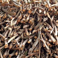 stump stack background