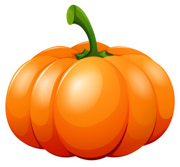 Fresh pumpkin on white background