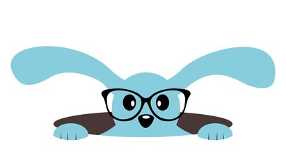 Cute bunny with glasses in a hole. Isolated