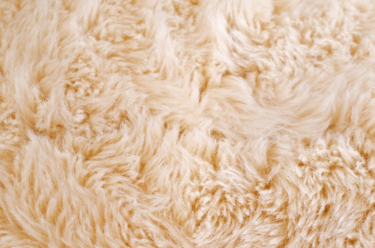 Background of beige fur
