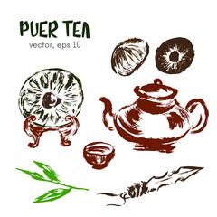 Sketched illustration of  puer tea. Hand drawn brush food ingred