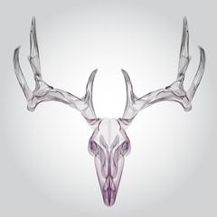 Wireframe hipster design deer skull, head