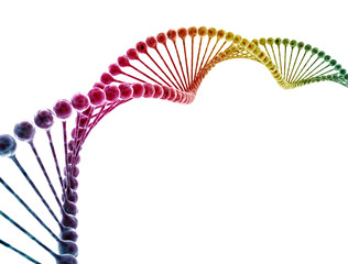 Multi color dna model isolated on white background