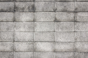 Gray brick wall background.
