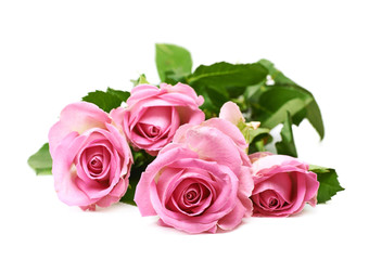 Pile of pink roses isolated
