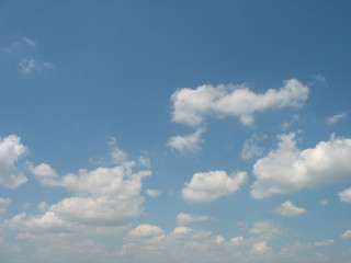 one of the photos of the summer sky