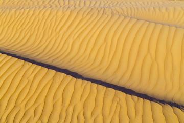 Sand dune Texture summer vacation