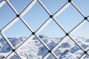 Nature behind bars
