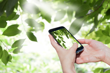 Woman hands  with smart phone against spring green background .