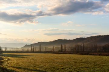 spring morning landscape