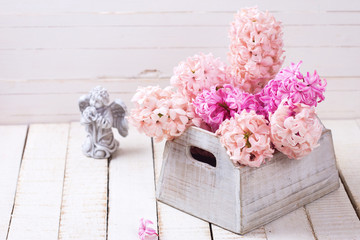 Background with fresh pink hyacinths in box  and angel on white