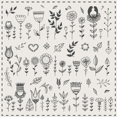 Herbs and flowers. Various cute decorative flowers, leaves and herbs painted by hand. Vector set.