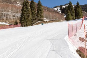 snowy ski trails