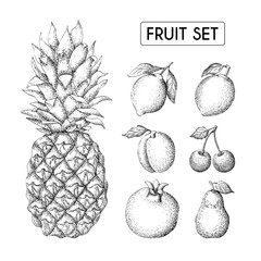 fruit hand drawn set