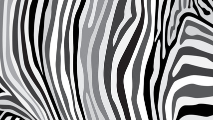 Zebra pattern created from grey and black colour, illustration