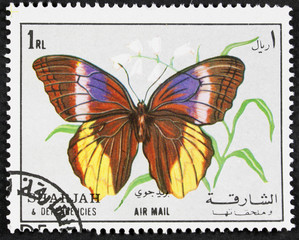 GROOTEBROEK ,THE NETHERLANDS - MARCH 8,2016 : A stamp printed in Sharjah shows butterfly, circa 1972