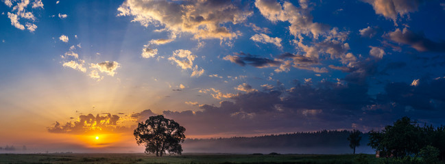 Beautiful sunrise and tree