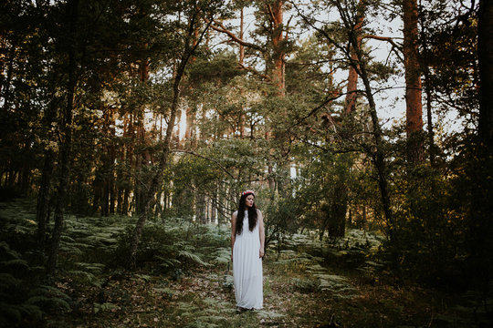 Brunette woman in a white dress in the woods