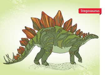 Vector illustration of Stegosaurus armatus or covered lizard on the green background. Series of prehistoric dinosaurs. Fossil animals and reptiles in contour style.
