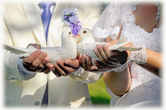 Newlyweds are holding a pair of white doves