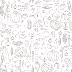 Vector seamless pattern with hand drawn isolated vegetables on white color