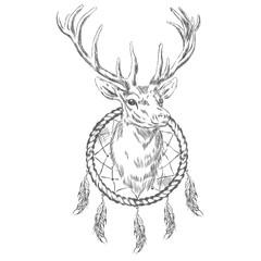 Deer and Dreamcatcher. Vector illustration.