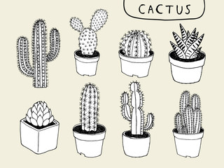 Vector Cactus Hand Drawn