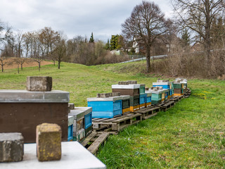 Bienenkästen im Herbst