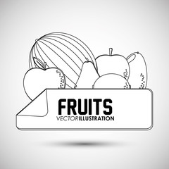 Fruits icon design, Vector illustration