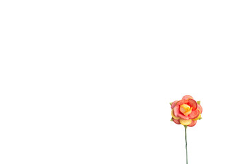 red and yellow rose paper flower isolate on white background