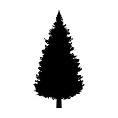 Evergreen conifer / pine tree flat icon for apps and websites