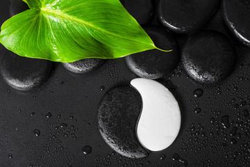 top view of beautiful spa setting Yin-Yang stone texture, green