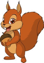 Little funny squirrel