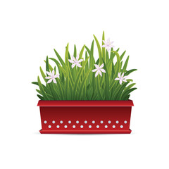 Icon long container with flowers isolated on white background.
